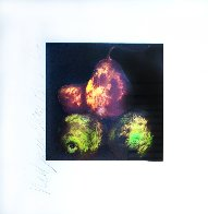 Pears Set of 4 Prints 1989 Limited Edition Print by Donald Sultan - 4