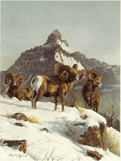 Bighorn 1978 Limited Edition Print by Gary Swanson