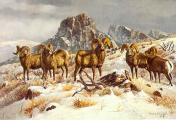 Wind River Winter 1978 Limited Edition Print by Gary Swanson