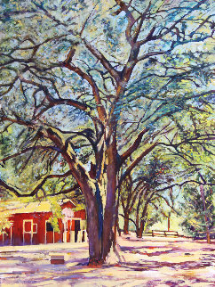 Sonoma Oak 2019 40x30 Original Painting - Tom Swimm