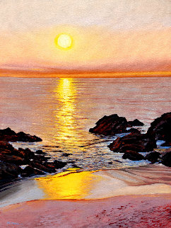 Laguna Sunset 2019 40x30 Original Painting - Tom Swimm
