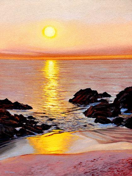 Laguna Sunset 2019 40x30 Original Painting by Tom Swimm