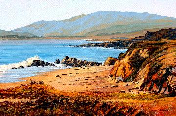 Moonstone Beach 2018 24x36 San Diego Original Painting - Tom Swimm