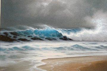 Rhythm of the Midnight Sea 1992 33x50 Limited Edition Print - Roy Tabora