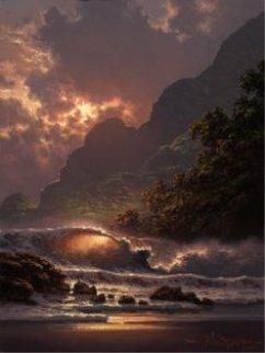 Evening Ablaze 2005 Limited Edition Print by Roy Tabora