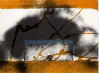Regalim 1987 Limited Edition Print by Antoni Tapies - 0