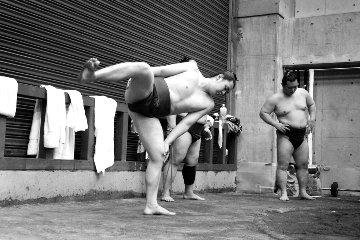Flex 2016 Sumo Photography - Adi Tarkay