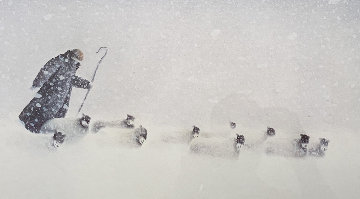 In Snow 2000 Limited Edition Print by Mackenzie Thorpe