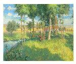 Golden Light Limited Edition Print - Christian Title