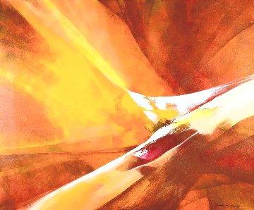 Summer of Fire 2015 39x47 Huge Original Painting - Thomas Leung