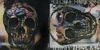 Skull Unique on Album Cover  2012  22x34 Original Painting by Peter Tunney - 0