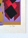 Ion Album - Kris Bille 1989 Limited Edition Print by Victor Vasarely - 4