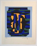 Ion Album - Risir AP 1989 Limited Edition Print by Victor Vasarely - 1