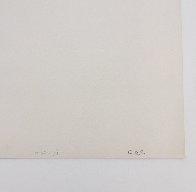 Tecoma AP EA 1988 Limited Edition Print by Victor Vasarely - 5