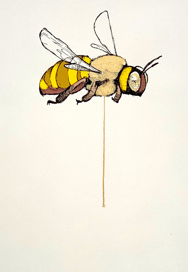 Bee Limited Edition Print by Sage  Vaughn