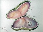 Butterfly Shell Watercolor 2010 13x13 Watercolor - Vladimir Kush