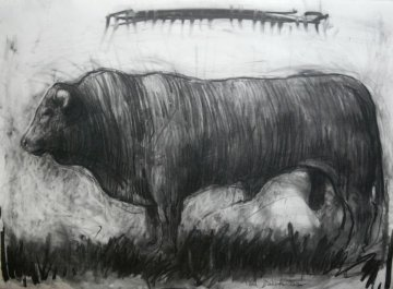 Bull Charcoal 2013 30x40 Drawing by Nico Vrielink