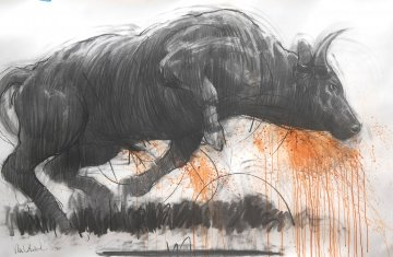 Raging Bull II  2014 39x59 Works on Paper (not prints) by Nico Vrielink