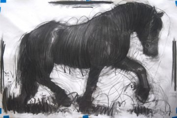 Horse 2 Drawing 2015 39x59 Drawing by Nico Vrielink