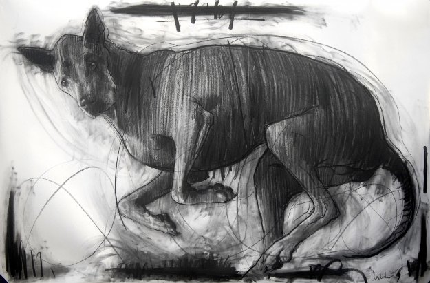Sputnik, My Dog Drawing 2015 39x59 Drawing by Nico Vrielink