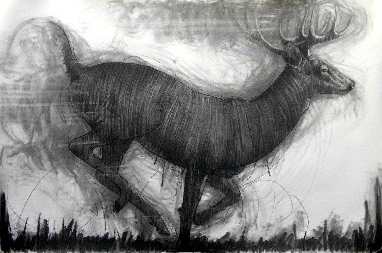 Running Deer Drawing 2015 39x59 Drawing by Nico Vrielink