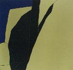 La Sombra Elegante 1991 Limited Edition Print - Harold Joe Waldrum