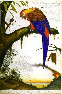 La Historia Me Absolvera AP 1999 Limited Edition Print by Walton Ford
