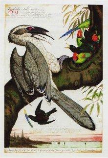 Swadeshi-cide AP 1998 Limited Edition Print by Walton Ford