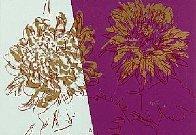Kiku Book 1983  Fs Ii. 308 Limited Edition Print by Andy Warhol - 0