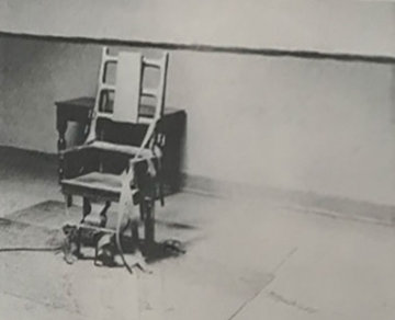 Electric Chair (retrospective Series) 1978 Double Sided Limited Edition Print by Andy Warhol
