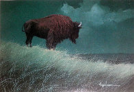 Buffalo on Hill Limited Edition Print by Wayne Cooper - 0