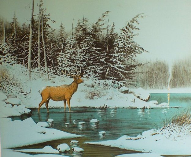 North (One Bull) AP Limited Edition Print by Wayne Cooper