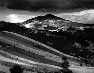 Guatemala Landscape 1955 30x33 Photography - Brett Weston