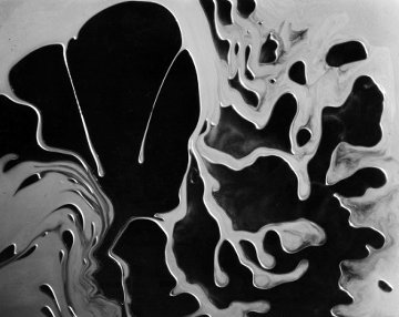 Abstraction 1955 Unique 30x33 Photography by Brett Weston
