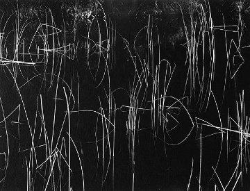 Reeds, Oregon 1975 Photography by Brett Weston