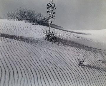 White Sands 1946 Limited Edition Print - Brett Weston