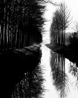 Holland Canal 1983 Limited Edition Print - Brett Weston