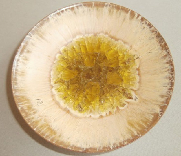 Yellow Glazed Jeweled Ceramic Bowl 1950 6 in Sculpture by Beatrice Wood