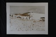 Fence Line 1976 Limited Edition Print by Andrew Wyeth - 1