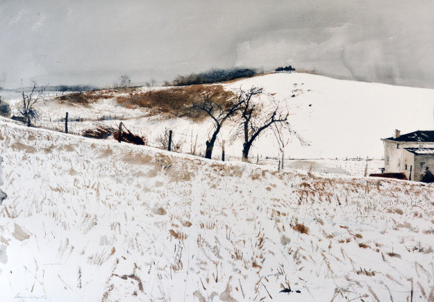 Fence Line 1976 Limited Edition Print by Andrew Wyeth