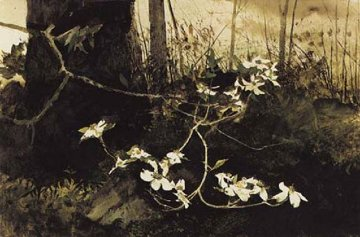 Dogwood 1982 HS Limited Edition Print - Andrew Wyeth