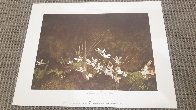 May Day 1962 HS Limited Edition Print by Andrew Wyeth - 1