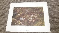 Quaker Ladies 1962 HS Limited Edition Print by Andrew Wyeth - 1