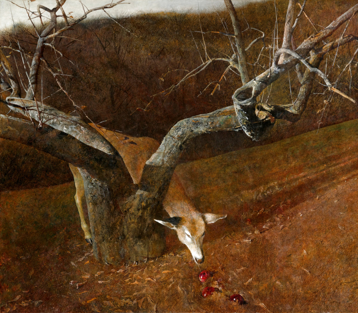 Jacklight 1982 HS Hand Digned Limited Edition Print by Andrew Wyeth