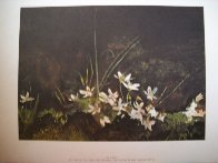 Four Seasons Portfolio, Suite of 12 1961 HS Limited Edition Print by Andrew Wyeth - 12