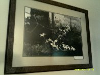 Dogwood 1983 HS Limited Edition Print by Andrew Wyeth - 1