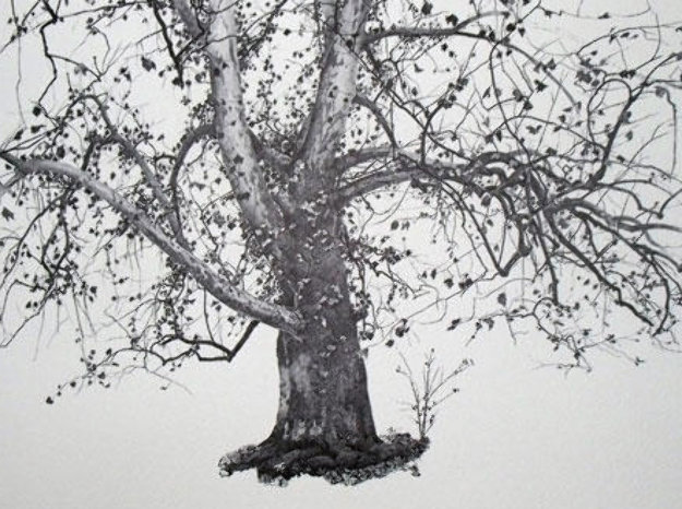 Four Season Portfolio of 12 Collotypes Limited Edition Print by Andrew Wyeth