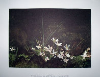 Four Season Portfolio of 12 Collotypes Limited Edition Print by Andrew Wyeth - 2