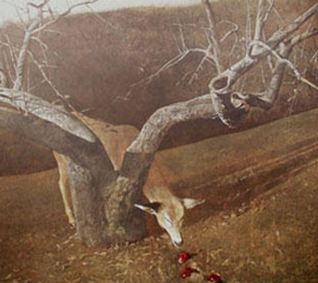Jacklight 1982 HS Limited Edition Print by Andrew Wyeth