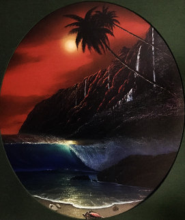 Warm Tropical Paradise 2002 Limited Edition Print - Robert Wyland